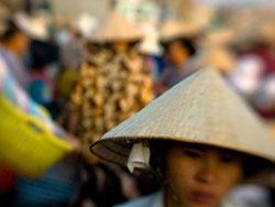A Vietnamese fish market