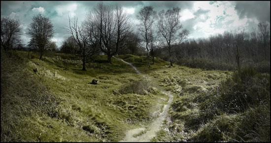 In Flanders Fields by Jaaq