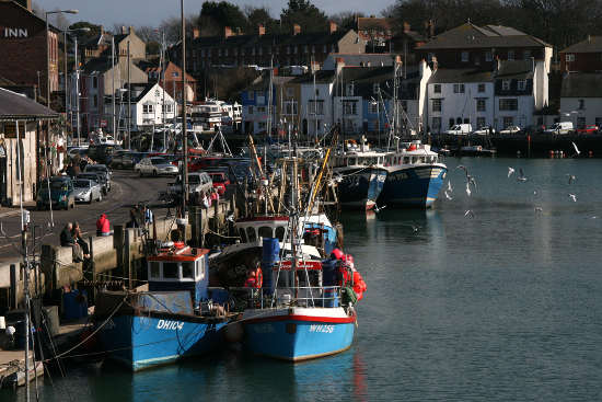 Fishing boats, Weymouth Harbourd by MarylinJane
