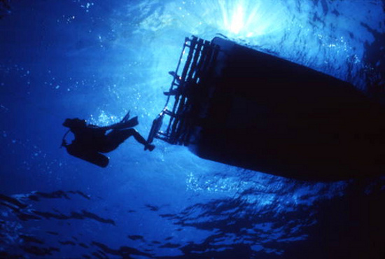 view-showing-a-scuba-diver-by-state-library-and-archives-florida