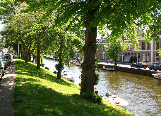 haarlem